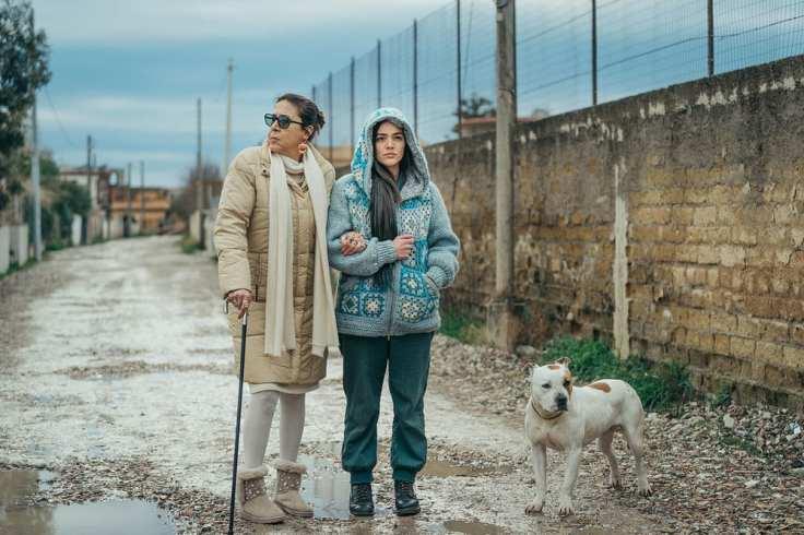 best international feature film il vizio della speranza